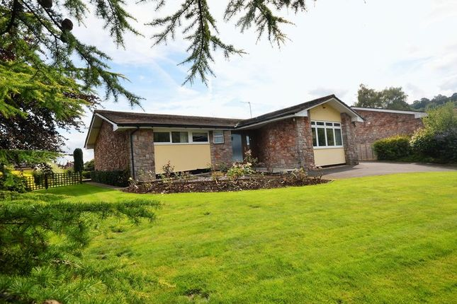 Thumbnail Detached bungalow for sale in Yew Tree Lane, Compton Martin, Bristol