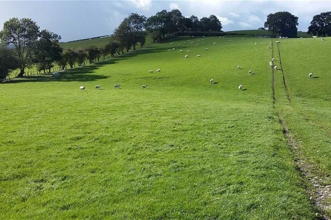 Thumbnail Land for sale in Bettws, Newtown
