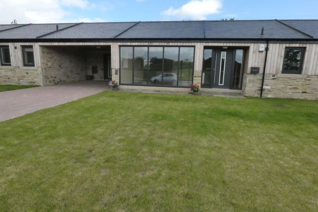 Thumbnail Bungalow for sale in Wylam