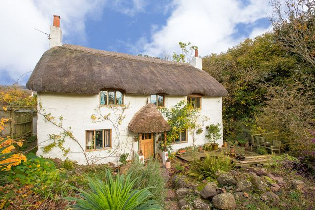 Thumbnail Cottage for sale in Coombe Lane, Teignmouth