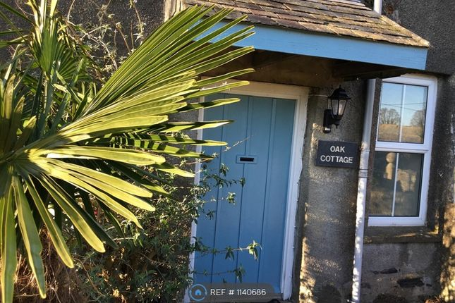 Thumbnail Semi-detached house to rent in Holwood Farm, Saltash