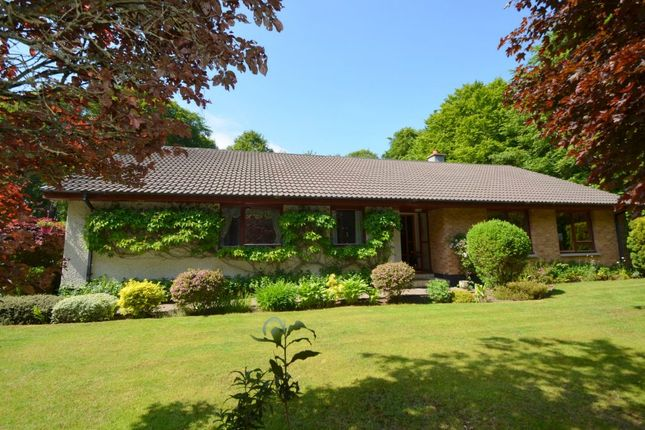 Thumbnail Detached bungalow for sale in 2 Kinsteary West, Lethen Road, Auldearn, Highland