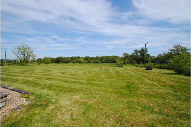 Garden of Burtle, Bridgwater TA7