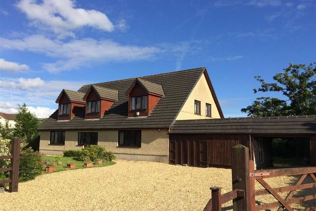 Thumbnail Detached house for sale in Pererin, Carway, Llanelli