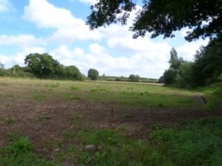Thumbnail Land for sale in Yarpole, Leominster