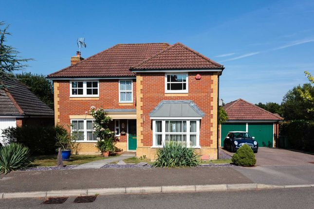 Thumbnail Detached house for sale in Turners Close, Southwater, Horsham