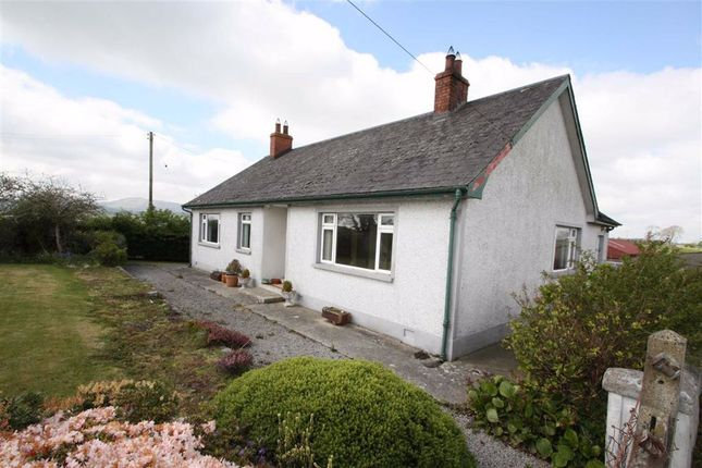 Thumbnail Detached bungalow to rent in Dromara Road, Ballynahinch, Down