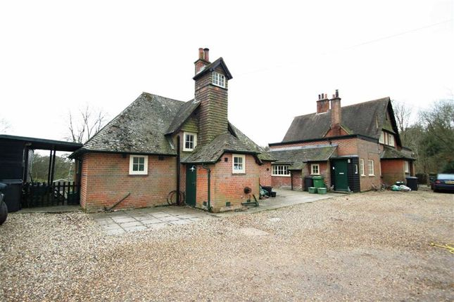 Thumbnail Detached house to rent in Hermitage, Thatcham