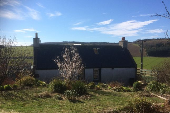 Thumbnail Cottage for sale in Inverkeithny, Huntly, Aberdeenshire