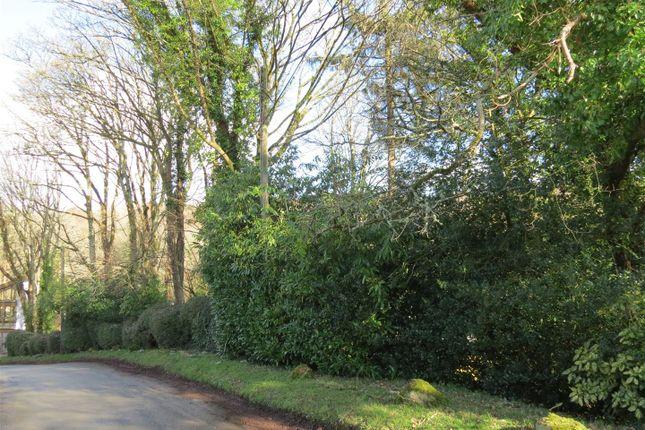 Img_9620 of Lower Tregongeeves Lane, Polgooth, Polgooth PL26