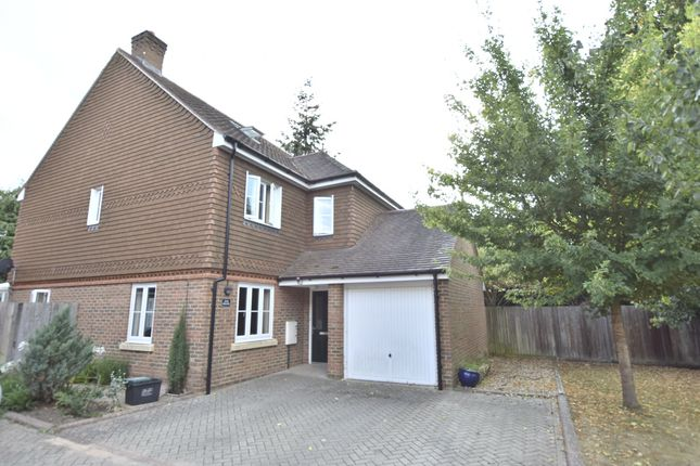 Thumbnail Detached house for sale in Millfield Close, Horley, Surrey