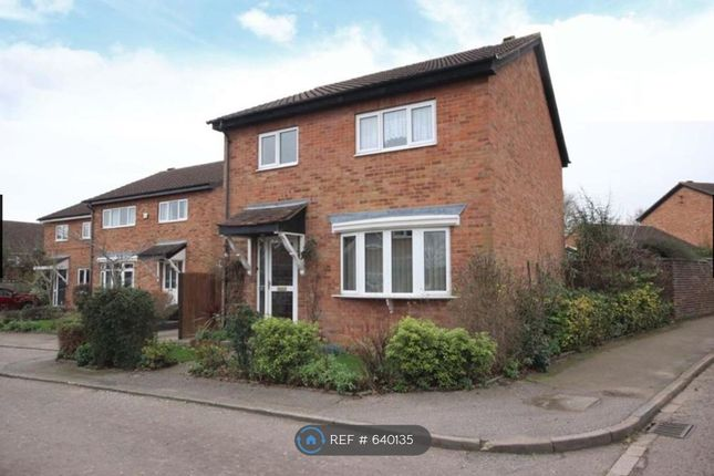 Thumbnail Detached house to rent in Connaught Way, Bedford