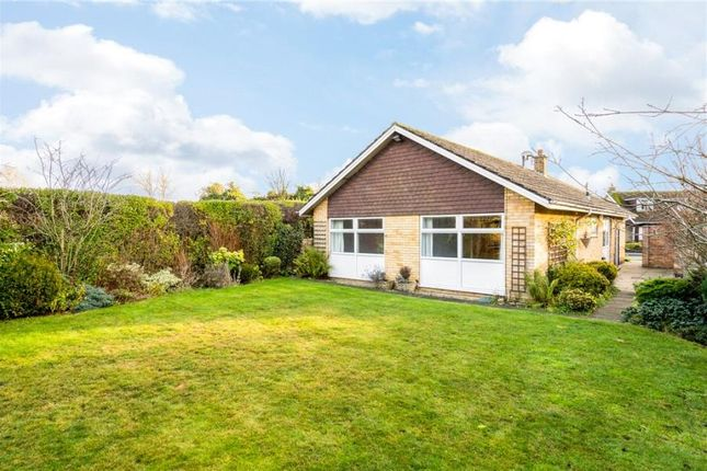 3 bed bungalow to rent in Mallorie Park Drive, Ripon, North Yorkshire HG4