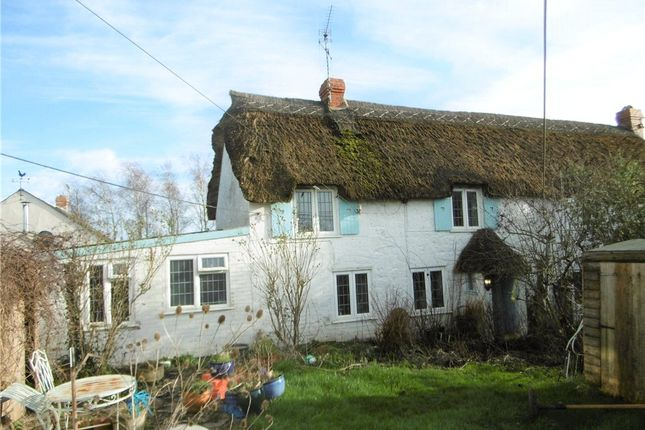 Thumbnail Semi-detached house to rent in Salwayash, Bridport