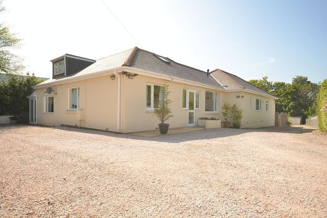 Thumbnail Bungalow for sale in Brixham Road, Paignton