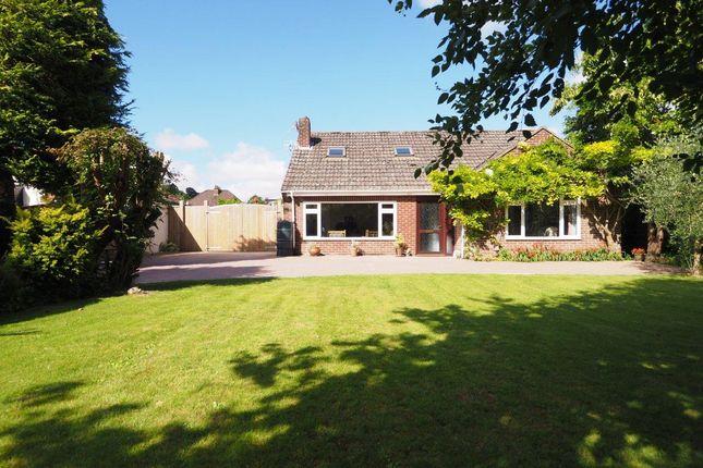 Thumbnail Detached house for sale in New Bridge Road, Salisbury