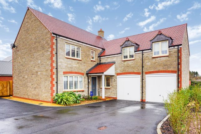 Thumbnail Detached house for sale in Muntjac Road, Langford