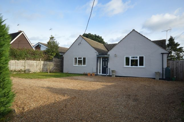 Thumbnail Bungalow for sale in London Road, Black Notley, Braintree