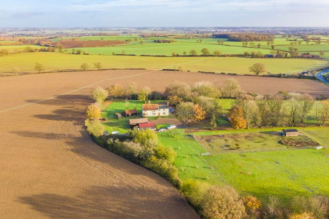 Thumbnail Detached house for sale in Evans Heath, Hadleigh, Ipswich