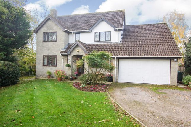 Thumbnail Detached house for sale in Lodge Lane, Nailsea