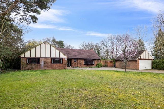 Thumbnail Bungalow for sale in Boughton Hall Avenue, Send, Woking, Surrey
