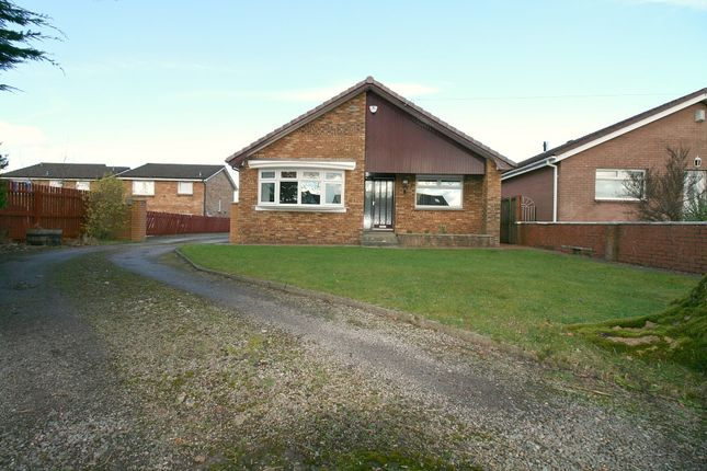 Thumbnail Detached bungalow for sale in Loanhead Road, Newarthill