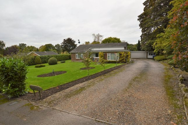 Thumbnail Detached bungalow for sale in Maybourne Rise, Woking