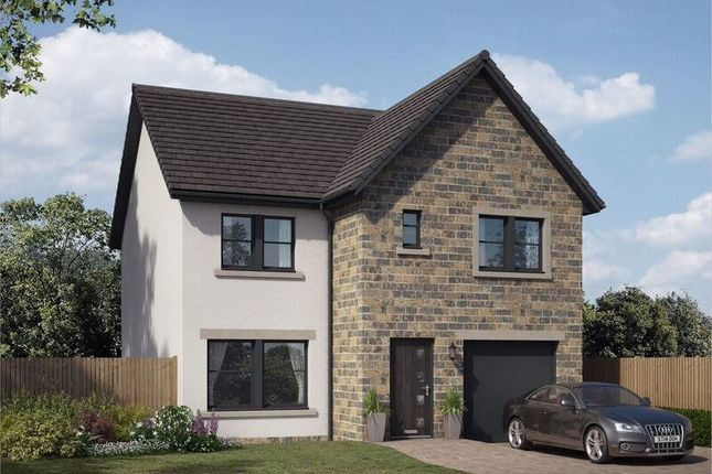 Thumbnail Property for sale in The Avenue, Lochgelly