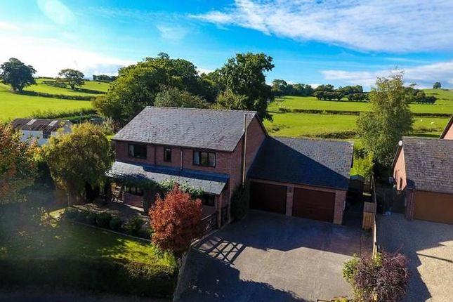 Thumbnail Detached house for sale in Llanfihangel Talyllyn, Brecon