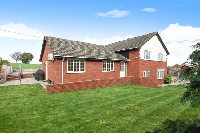 4 bed detached house for sale in Allensmore, Hereford
