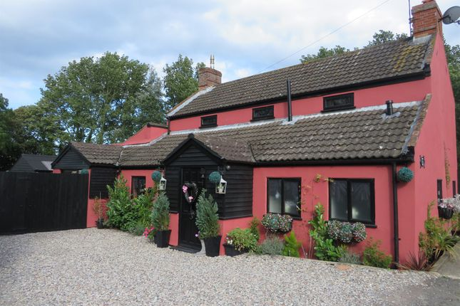 Thumbnail Detached house for sale in Nogdam End, Norton Subcourse, Norwich
