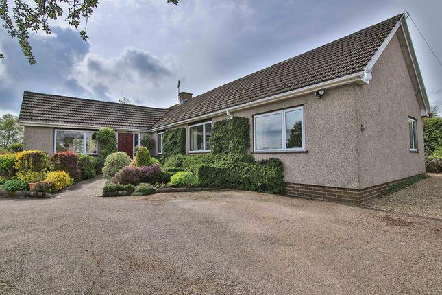 Thumbnail Detached bungalow for sale in Bryn-Y-Gwenin, Abergavenny