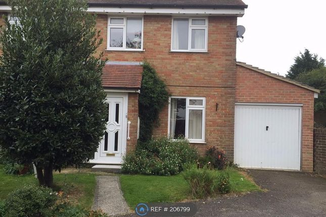Thumbnail Detached house to rent in Bush Close, Sittingbourne