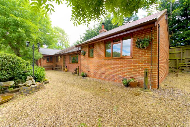 Thumbnail Detached bungalow for sale in Dingley Dell, Dingley, Market Harborough