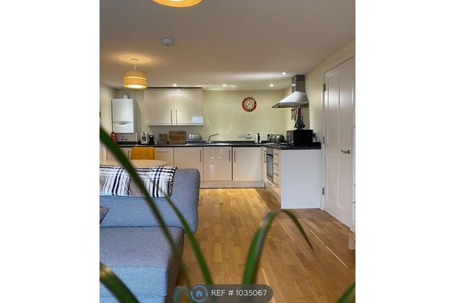 1 bed flat to rent in Prince Of Wales Pier, Falmouth TR11