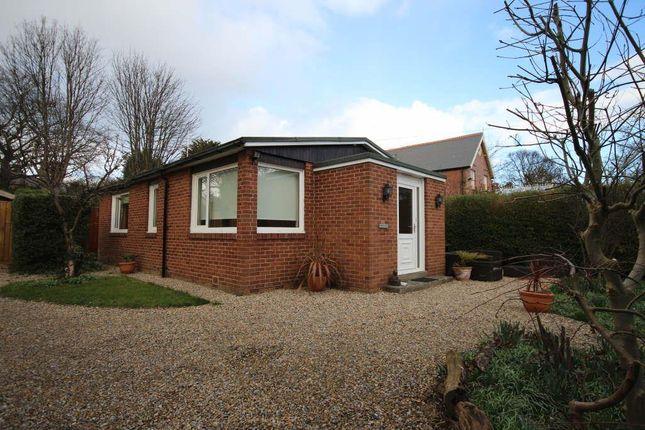 Thumbnail Detached bungalow to rent in West Park Road, Cleadon Village, Cleadon