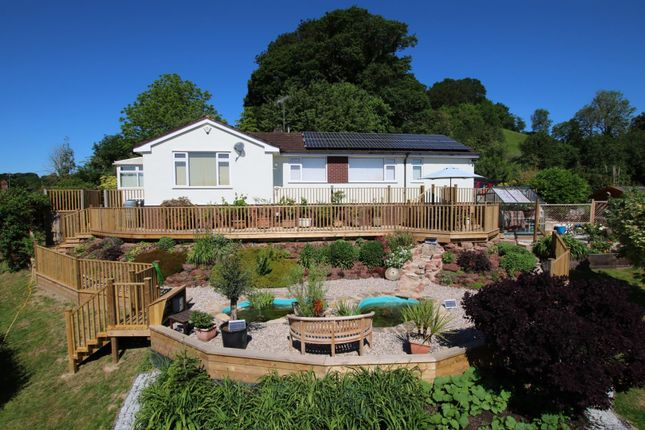 Thumbnail Detached bungalow to rent in Three Horse Shoes, Cowley, Exeter