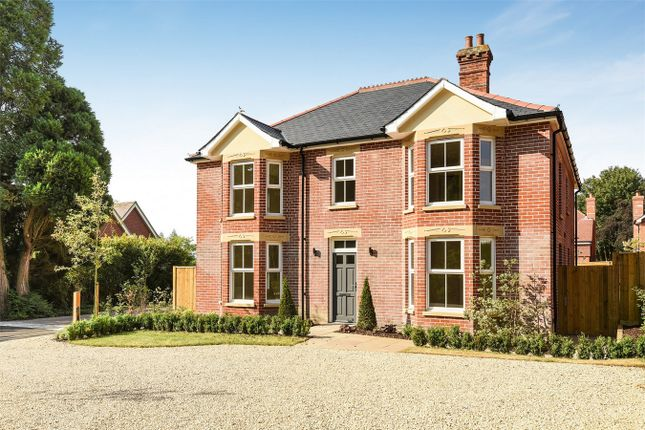 Thumbnail Detached house for sale in Romsey Road, Awbridge, Romsey, Hampshire