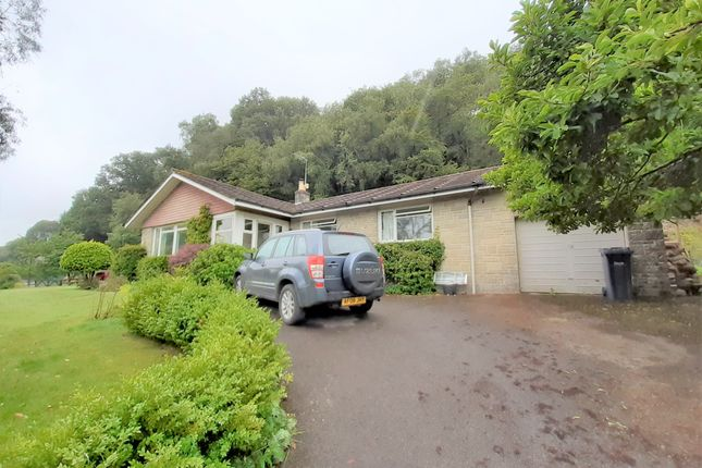 Thumbnail Bungalow to rent in Gutch Common, Shaftesbury