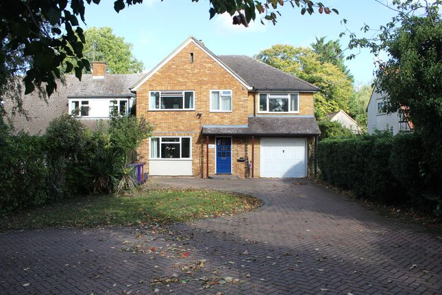 Thumbnail Semi-detached house for sale in Wilbury Road, Letchworth Garden City