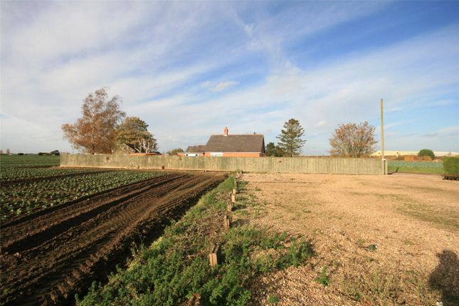 Thumbnail Land for sale in Land Adjacent To Excessive, Homers Lane