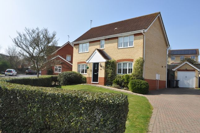Thumbnail Detached house for sale in Kelvedon Drive, Ipswich