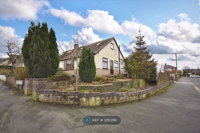 Thumbnail Bungalow to rent in Anderson Road, Wilpshire, Blackburn