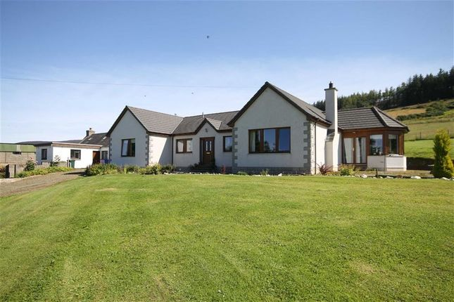 Thumbnail Detached bungalow for sale in Grange, Keith