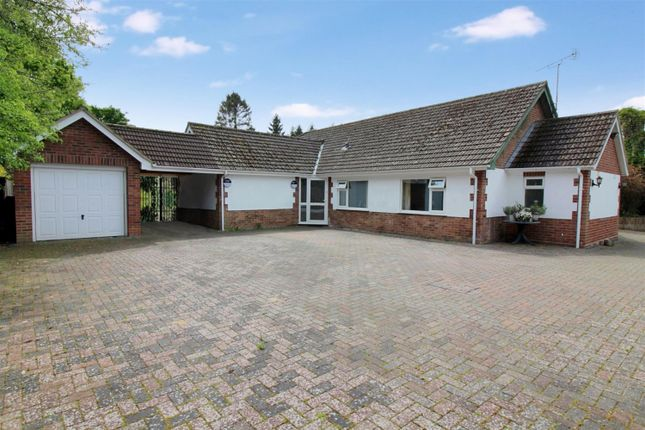 Thumbnail Detached bungalow for sale in Norwich Road, Wroxham, Norwich