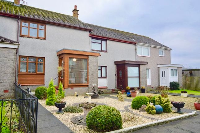 Thumbnail Terraced house for sale in Mcleod Court, Tarbolton, Mauchline