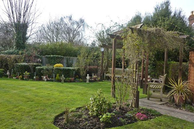 Garden of Waltham Road, Twyford, Reading RG10
