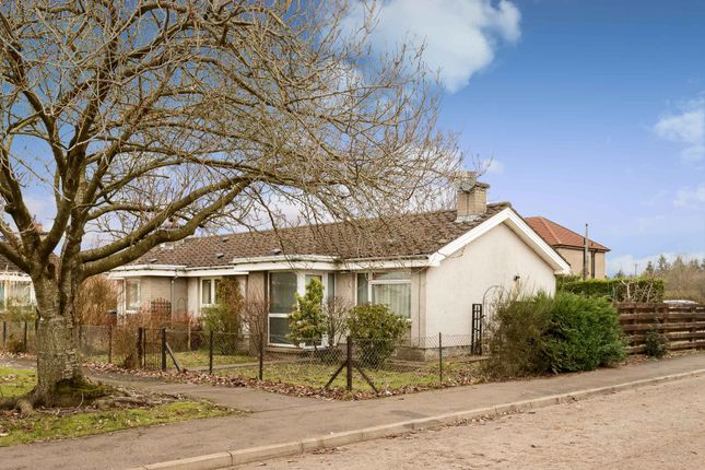 Thumbnail Bungalow for sale in Blackloch Crescent, Carsie, Blairgowrie, Perthshire