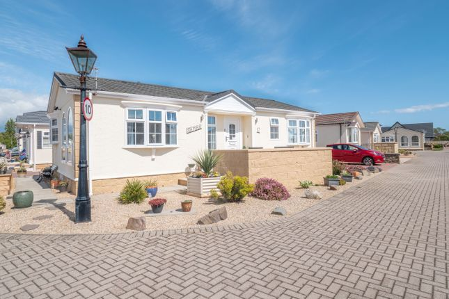 Basin View Crescent, Montrose DD10