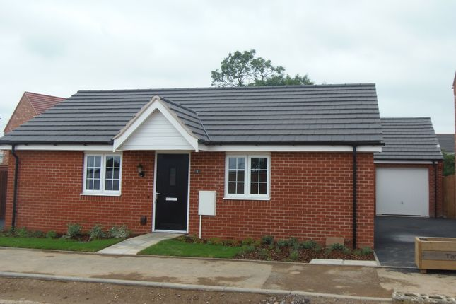 Thumbnail Detached bungalow to rent in Willow Road, Leicester Forest East
